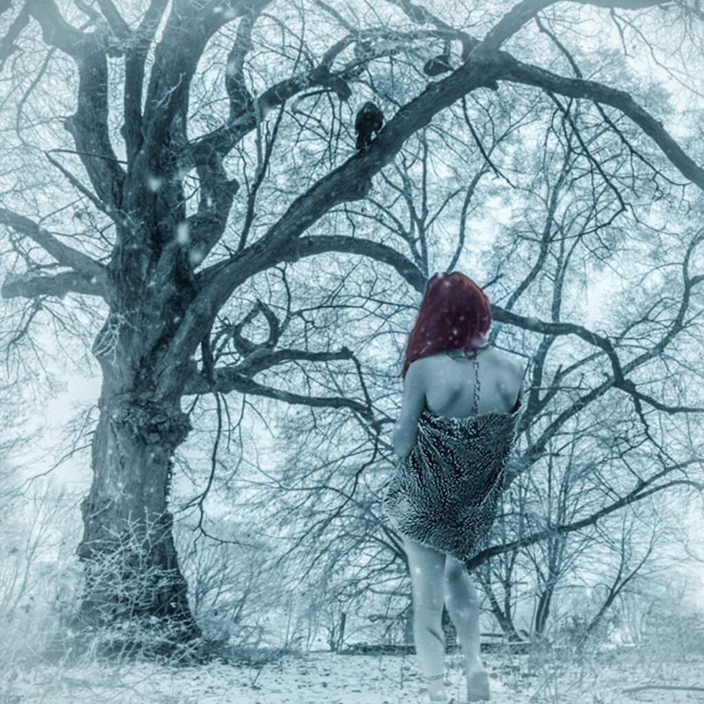 Digital Composing Cold Winter Day